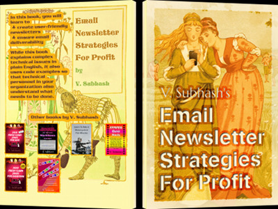 Book cover of 'Email Newsletter Strategies for Profit'